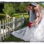 mary-david_geese